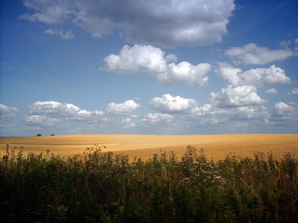 Fotos von Feldern & Wiesen