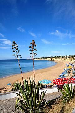 Städtereise Tunesien