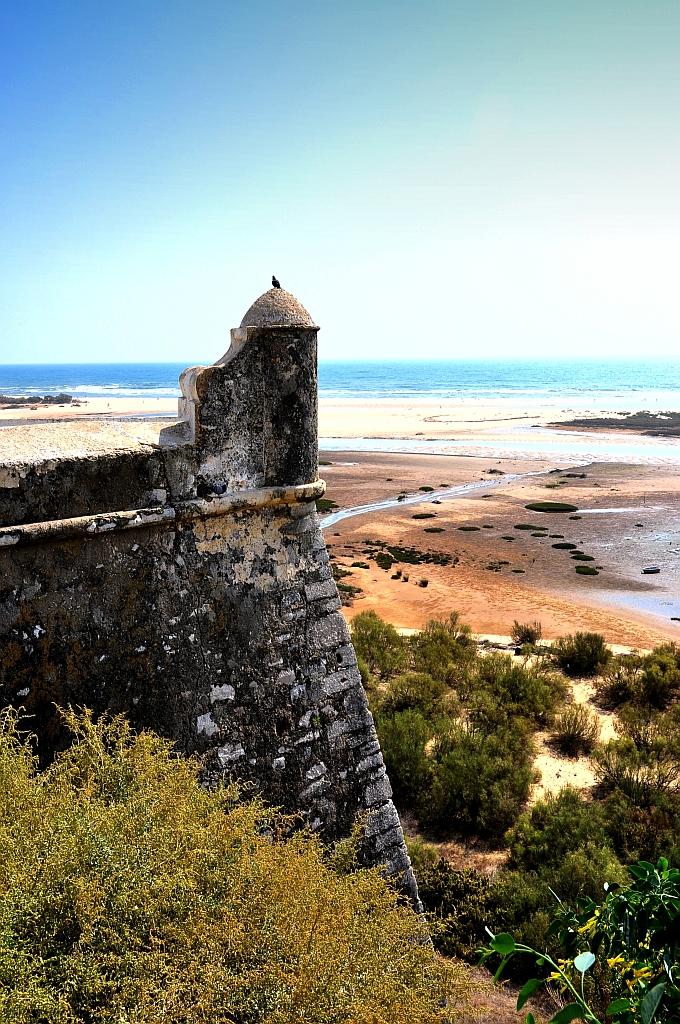 Eastern algarve faro olhao tavira on pinterest - Natura portugal ...